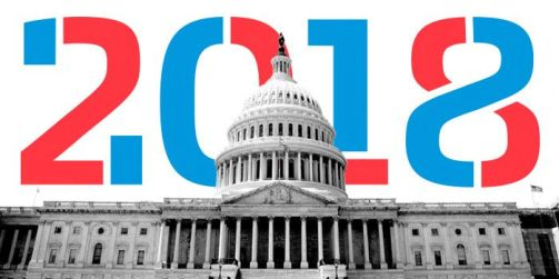 Image result for images of mid term election of 2018